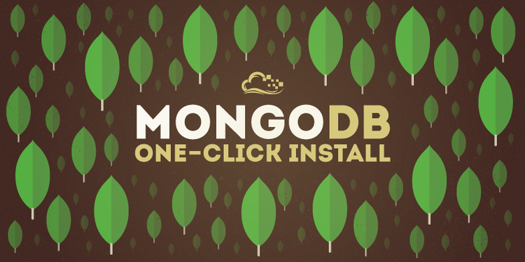 How To Use the MongoDB One-Click Application