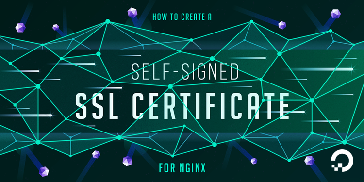 How To Create a Self-Signed SSL Cert for Nginx in Ubuntu 18 04