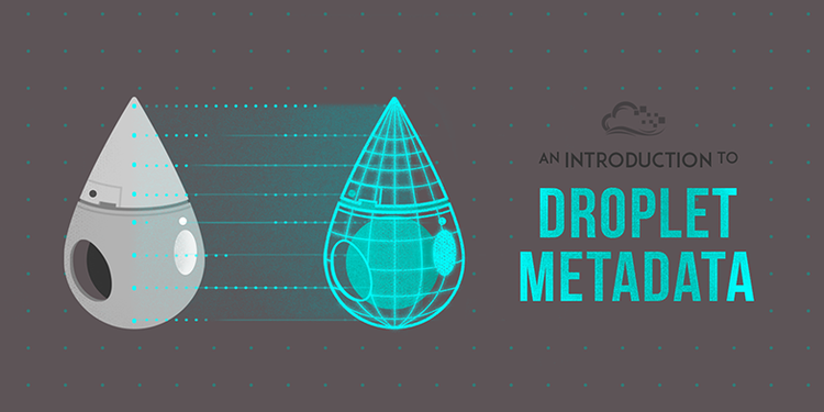 An Introduction to Droplet Metadata
