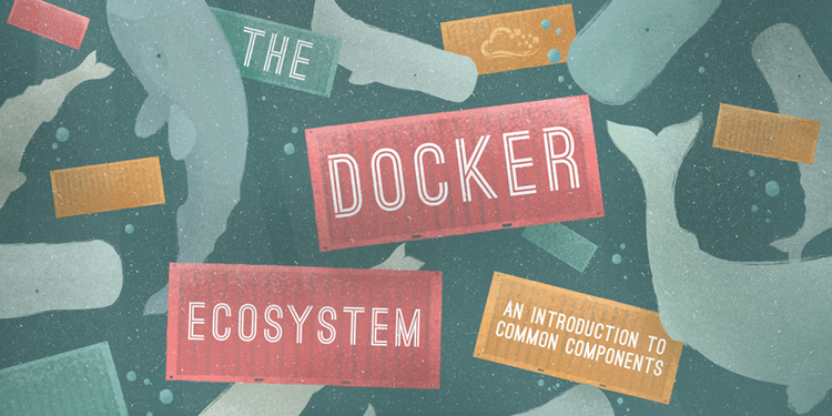 The Docker Ecosystem: An Introduction to Common Components